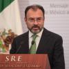 MÉXICO NO PAGARÁ EL MURO; VIDEGARAY