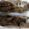 Atrapa PGR sujetos en posesión de marihuana en Edomex