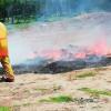 Destruye PGR 745 kilos de drogas decomisadas en Edomex