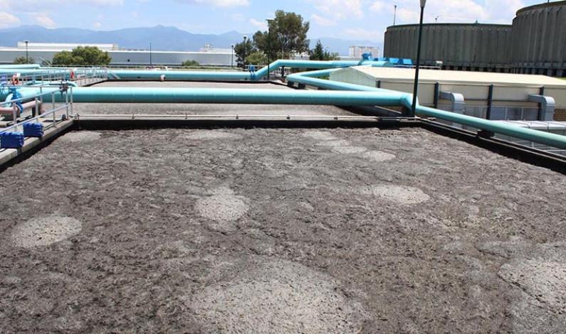 Fertilizan cultivos con lodos de plantas de tratamiento de aguas residuales