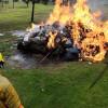 Incineran 706 kilos de drogas aseguradas en Edomex