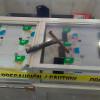 Frustran robo a tienda departamental y detienen 3 presuntos ladrones