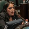 Traicionó diputada Liliana Gollás al PES y quebró alianza con Morena