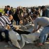 Se hunde ferry con 250 personas en Irak; celebraban el año nuevo