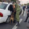 Capturan 113 presuntos delincuentes en Tecámac y Tlalnepantla