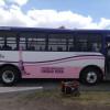 Operan 2 autobuses rosas para todas las mujeres del Valle de Toluca