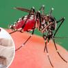 Van 3 casos positivos de Dengue en Edomex