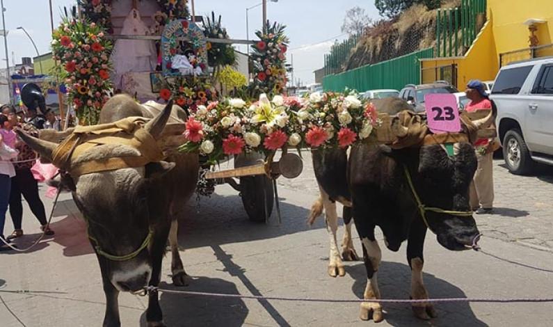Celebró Metepec a San Isidro Labrador, con Ley Seca