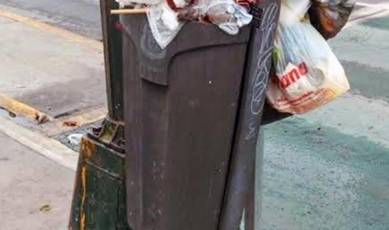 Carece Toluca de botes de basura y los pocos que hay son mal utilizados