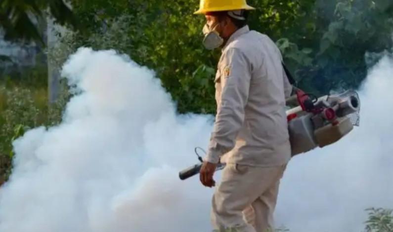Suman cinco mil casos y 13 muertos por dengue
