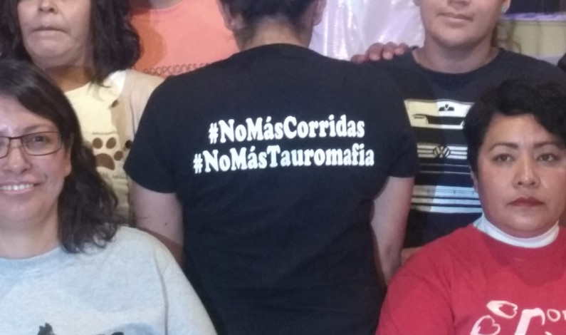 Intentan impedir corrida de toros «Guadalupana» en Toluca