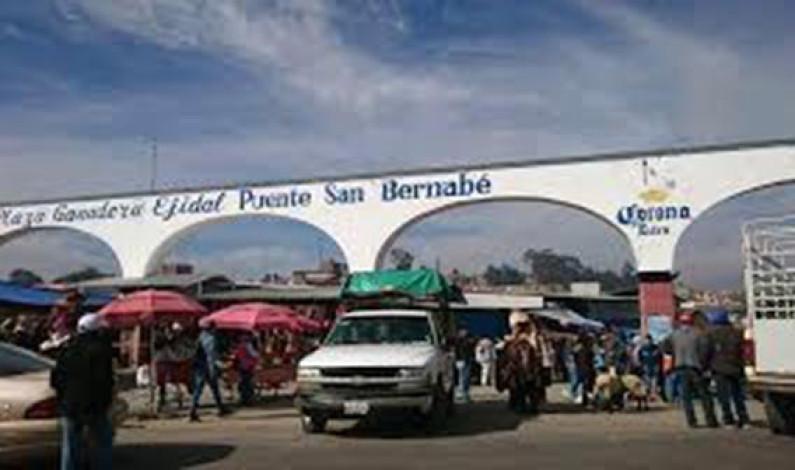 No habrá tianguis ganadero en San Bernabé