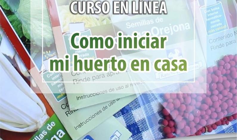 Ofrece Toluca talleres ambientales en línea