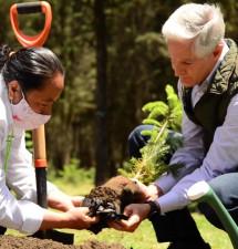 Crece masa forestal mexiquense